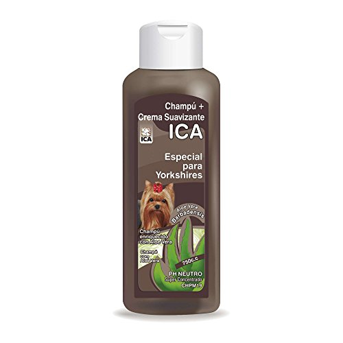 ICA chpm19 Shampoo with Aloe Vera for Yorkshire