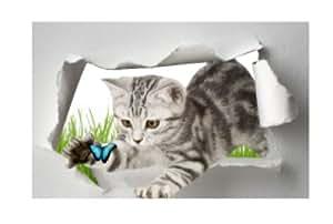 Affiche trompe l 39 oeil animal chat papillon 105x70cm for Stickers bibliotheque porte