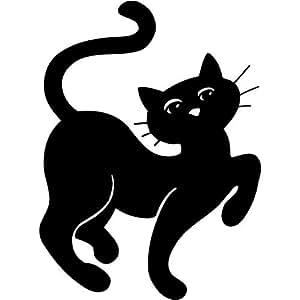 Cute Scaredy Cat Video