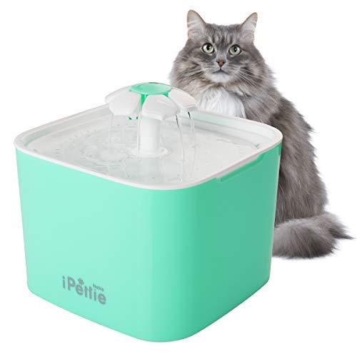 iPettie Neko NS Katzen Trinkbrunnen 2L Automatischer mit Super Ruhiger Pumpe und Austauschbarem Filter, Super Leise Automatischer Elektrischer Wasserspender für Katzen und Hunde (Minzgrün) -