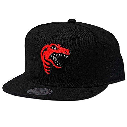 d333de0fa4e54 Mitchell   Ness Toronto Raptors Elements Snapback Cappello - Taglia unica -  black