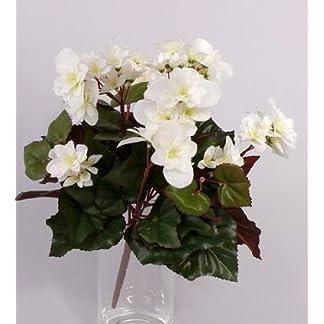 artplants.de Begonia Artificial Lamia, 70 Flores, Crema, 30cm – Flor de azúcar – Flor sintética