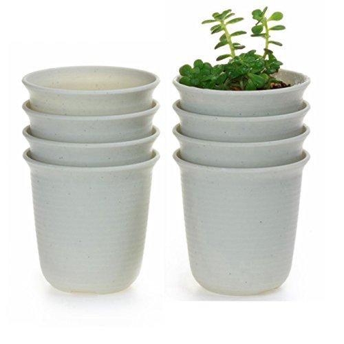 T4U 12CM Pots en résine Rond Série/Plante Succulente/Plante en Pot/Cactus/Pot De Fleur/Cultiver 1 Paquet de 8
