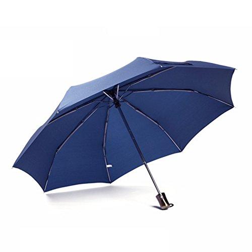 Regenschirme Vollautomatische Männer Falten Sunny Regen Dual-use-Business Travel Verstärkung Winddicht Erhöhen Sonnenschutz Männer/Frauen (Farbe : Blau) (Aus Rostfreiem Stahl Dual-bar)