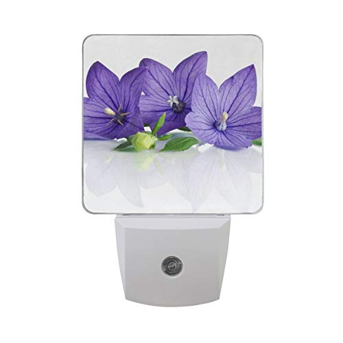 Floral Bell (DFISKK Nachtlicht Set of 2 Purple Flower Floral Bell Flowers On White Auto Sensor LED Dusk to Dawn Night Light Plug in Indoor for Adults)