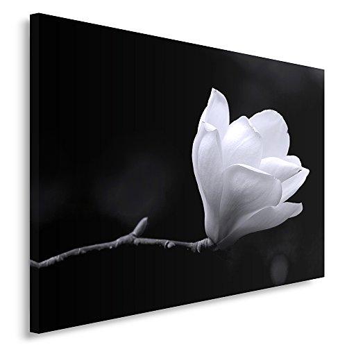 Feeby Frames, Cuadro en lienzo, Cuadro impresión, Cuadro decoración, Canvas 60x80 cm, FLOR, BLANCO Y NEGRO