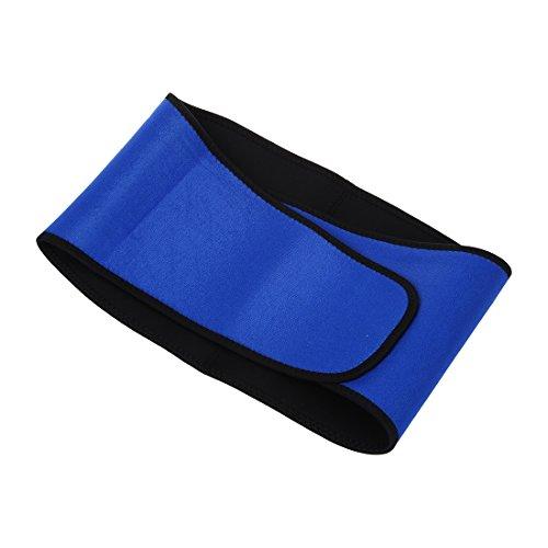 Back Waist Brace – Seat Belts