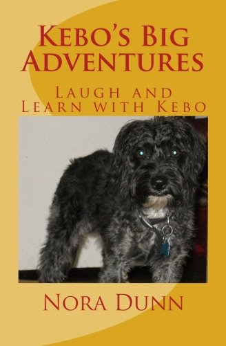 Kebo's Big Adventures: Life Is What You Make It: Volume 1
