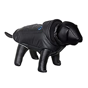 Nobby 66560 Bully Dog Coat, Black, S