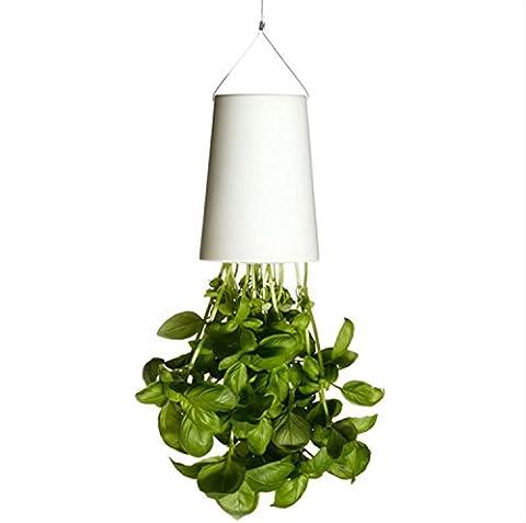 Asvert Small Inverted Plant Pot Upside Down Garden Flower Pot