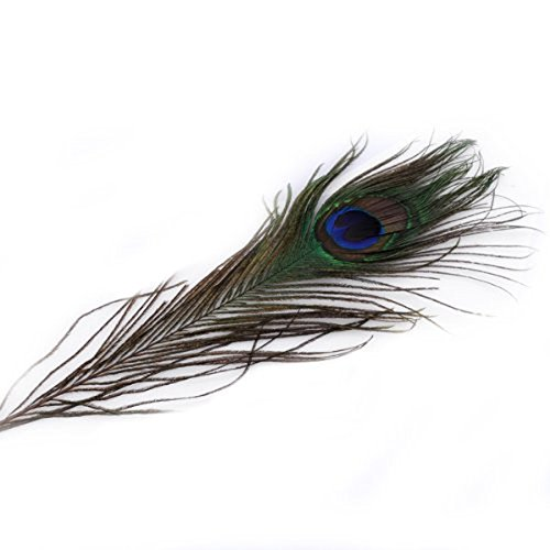 rosenice-50pz-25-30cm-occhi-piume-di-pavone-naturale-bella-coda-piume-decorazioni-per-abito-art-craf
