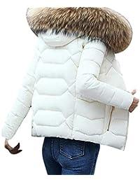 Doudoune Manteau Femme Hiver Élégant Mode Parka Poches Latérales Zipper  avec Fermeture Éclair Uni Manche Manches Longues Classique… e0aea365788