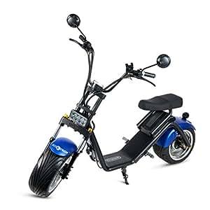 Ecoxtrem Scooter électrique Caigiees bleu