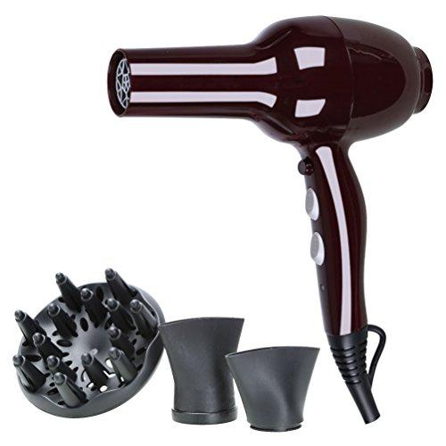 Föhn, Haarfön, Haartrockner, Hair dryer 2500W Salon Leistung mit 2 Blow Dry Düse & Luftbefeuchter für glatte, glänzende Haare
