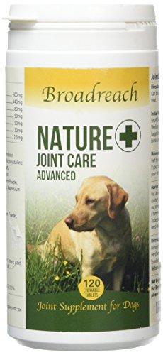 Hund Verbindung Ergänzung - Alle Natürlich Zutaten - Veterinär Formulierung - mit Glukosamin, Chondroitin und Kurkuma - 5 - 40kgs Neu (120 Tabletten) größe