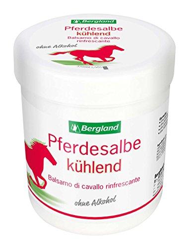 Bergland Pferdesalbe kühlend, 1er Pack (1 x 300 ml)