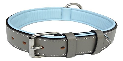 Soft Touch Halsbänder-Luxus Echt Leder Gepolsterte Hundehalsband, die Capri Kollektion -, Medium, Grey/Light Blue Padding -