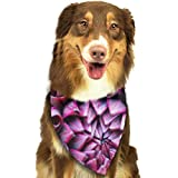 Sitear Dahlia Flower Bloom Background Dog Cat Fazzoletto Collo Set Adatto per Cani di Piccola e Grande Taglia