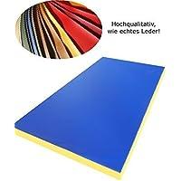 Suelo Gimnasio Estera Suave 200 x 100 x 8 cm Azul con rojos Hojas