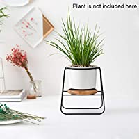 Takefuns Geometric Iron Rack Metal Holder with Small White Ceramic Pot Planter for Succulents Herbs Cactus Artificial Plants Flower Modern Centerpiece for Coffee Table