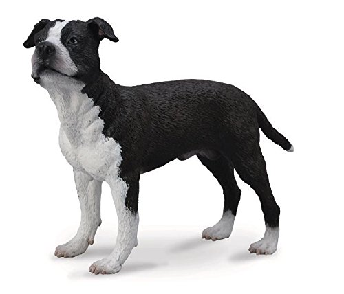 CollectA – 3388610 – Figurine – Animal – Dogs – American Staffordshire Terrier