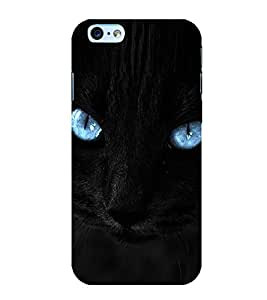 Cat with Blue Eyes 3D Hard Polycarbonate Designer Back Case Cover for Apple iPhone 6S