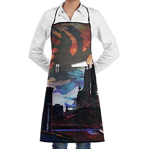 dfgjfgjdfj Albanian Flag City Schürze Lace Unisex Mens Womens Chef Adjustable Polyester Long Full Black Cooking Kitchen Schürzes Bib with Pockets for Restaurant Baking Crafting Gardening BBQ Grill (Breite City Kostüm)