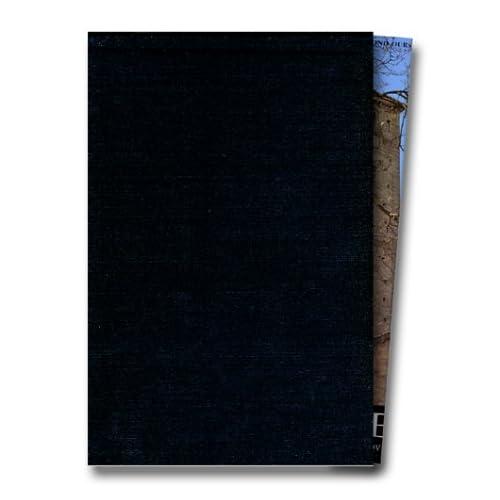 France romane, tome 1 : XIe siècle