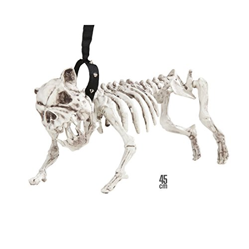 lloween Pitbull Raumdekoration 45 cm Knochen Dekofigur Hundeskelett mit Leine Karneval Kostüm Zubehör Horror Halloweendekoration Bulldogge Partydeko (Hund, Halloween Skelett Kostüm)