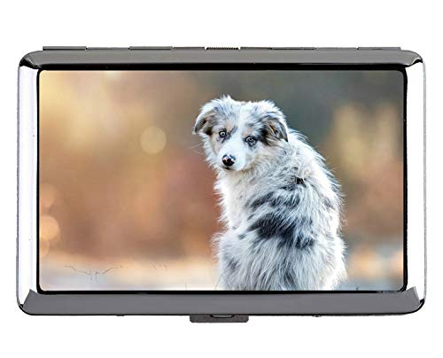 Kreative Aufbewahrungsbox, Haustier Australian Shepherd Dog Edelstahl-Kartenhalter (King Size)