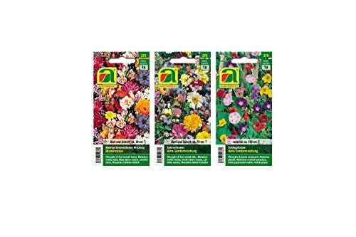 3 varietà | Assortimento di semi di fiori | Set per fiori ad alta estate | I fiori di bassa estate mescolano'prato fiorito' | Creepers High speciale mix