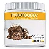 maxxidog - maxxipuppy Integratore per Il Cervello e Le Ossa dei Cuccioli - dà al Tuo Cucciolo la Giusta Carica Vitale - per Cani Giovani - Supporta Le Prime Fasi dello Sviluppo - Polvere 180 g