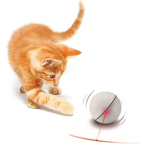 jouet de chat kitten toy jouet de chien puppy toy boule de jouet electronique lumiere a bille. Black Bedroom Furniture Sets. Home Design Ideas