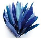 1 Beutel mit 10 g Federn können Indianer-blau