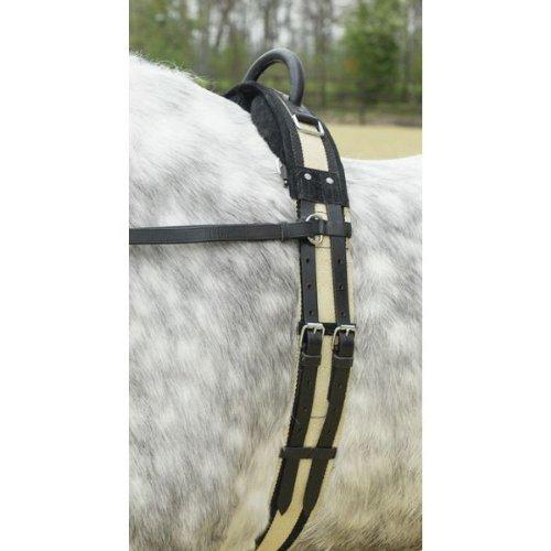 Busse Longiergurt mit Handgriff, Pony, schwarz
