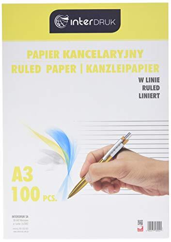 Interdruk PAKA100L - Papel para Escribir a Mano, A3 100, Multicolor