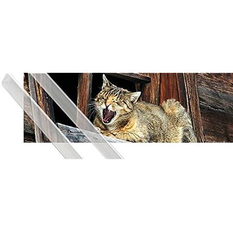 Poster + Sospensione : Gatti Poster Stampa (91x30 cm) Siesta Del Gatto, Non Disturbare E Coppia Di Barre Porta Poster Trasparente 1art1® - Non Disturbare Cat