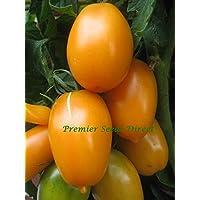 Portal Cool Tomate - Naranja Plátano - 1000 Semillas Finest - a granel