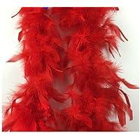 Koedu Generic 2m Plume Boa Moelleux Appliques à Coudre pour Décoration Chapeau Costume Artisanat Diy - Blanc (red)