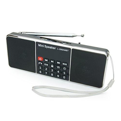 PRUNUS Portables AM FM Bluetooth Radio MP3 mit Doppelmagnet Lautsprechern – Stereo Sound – Automatische Sendereinrichtung- AUX und Sleep Timer Funktion - Unterstützung für Flash Drive/ Micro SD Card / TF Card (8GB, 16GB, 32GB, 64GB) für das Abspielen von MP3 Dateien. (Ipod 4 Dock Wecker)