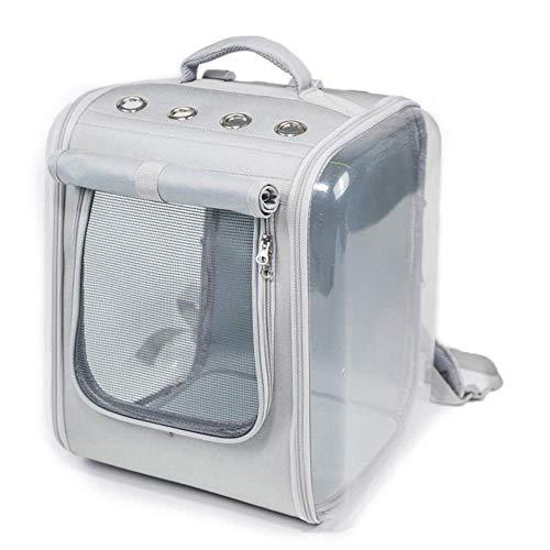 Lcxligang Mode-Haustier-Tragetasche, große Hundekatzen-Reise-Tragetaschen Leichte Faltbare Maschen-weiche Seiten-Hundehütte-Kiste for Katzen (Color : Silver) -