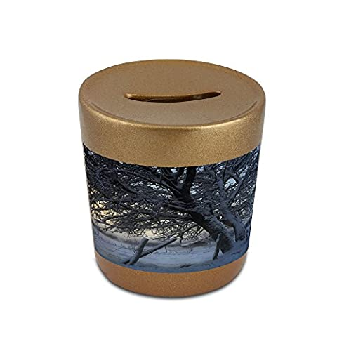 Money box with The countryside in winter, Sweden