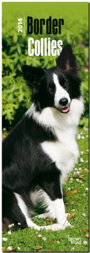 Border Collies 2014 Slimline Calendar