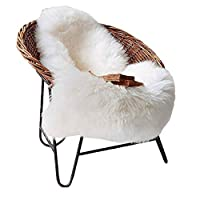 Faux Sheepskin Rug, Lambskin Imitation Rug, Longhair Fur, Leather Polyester, Faux Fleece Chair Cover Seat Pad Soft Fluffy Shaggy Area Rugs(White, 23.6 x 35.4inch)