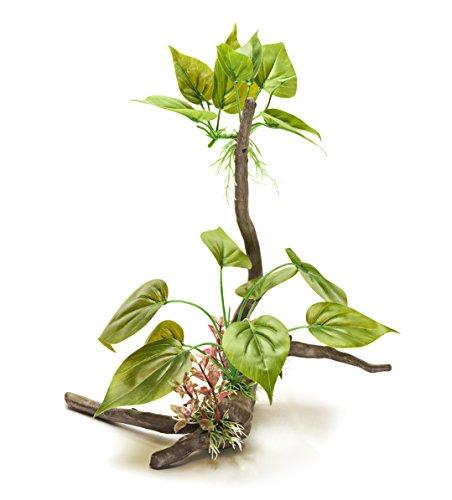 Pistachio Pet Schöne Realistische Aquarium Pflanze auf Wurzel 30,5cm/30cm hoch. New für - Aquarium Realistische Pflanzen