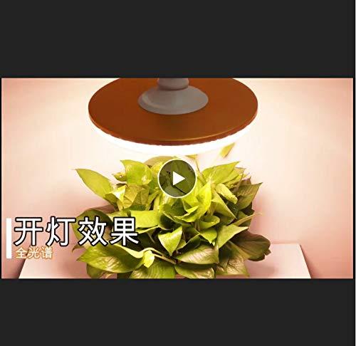 Ufo Led Wachsen Licht Vollspektrum Wasserdicht Warmweiß E27 Phyto Lampe Für Indoor Outdoor Pflanzenwachstumslampe Wachsen Zelt