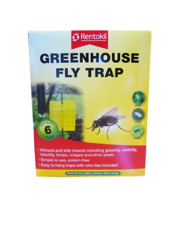 Rentokil serre Fly Piège 6 Traps- antiparasitaire