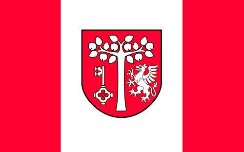 Preisvergleich Produktbild Flagge POL gmina Jodownik | Querformat Fahne | 0.06m² | 20x30cm für Diplomat-Flags Autofahnen
