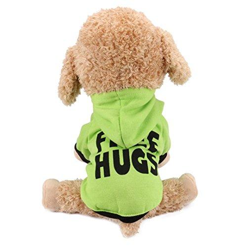 Angelof Vetement Chien/Chat Sweat A Capuche Chiot T Shirt Manteau 2 Pattes pour Chien Habits Hiver Chaud pour Petite Chiens Veste Chihuahua Accessoire (S, Vert)