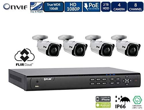 Flir Digimerge IP Security Kamera Sytem mit Dnr400P Serie 2 Festplatteneinschübe Nvr Und Flir N243Bw2 2Mp Außennetz mit Vandalismusschutz Kugelkamera (4 Einschuss Kameras mit 8-Kanal-2Tb NVR) - Lorex-security-kamera